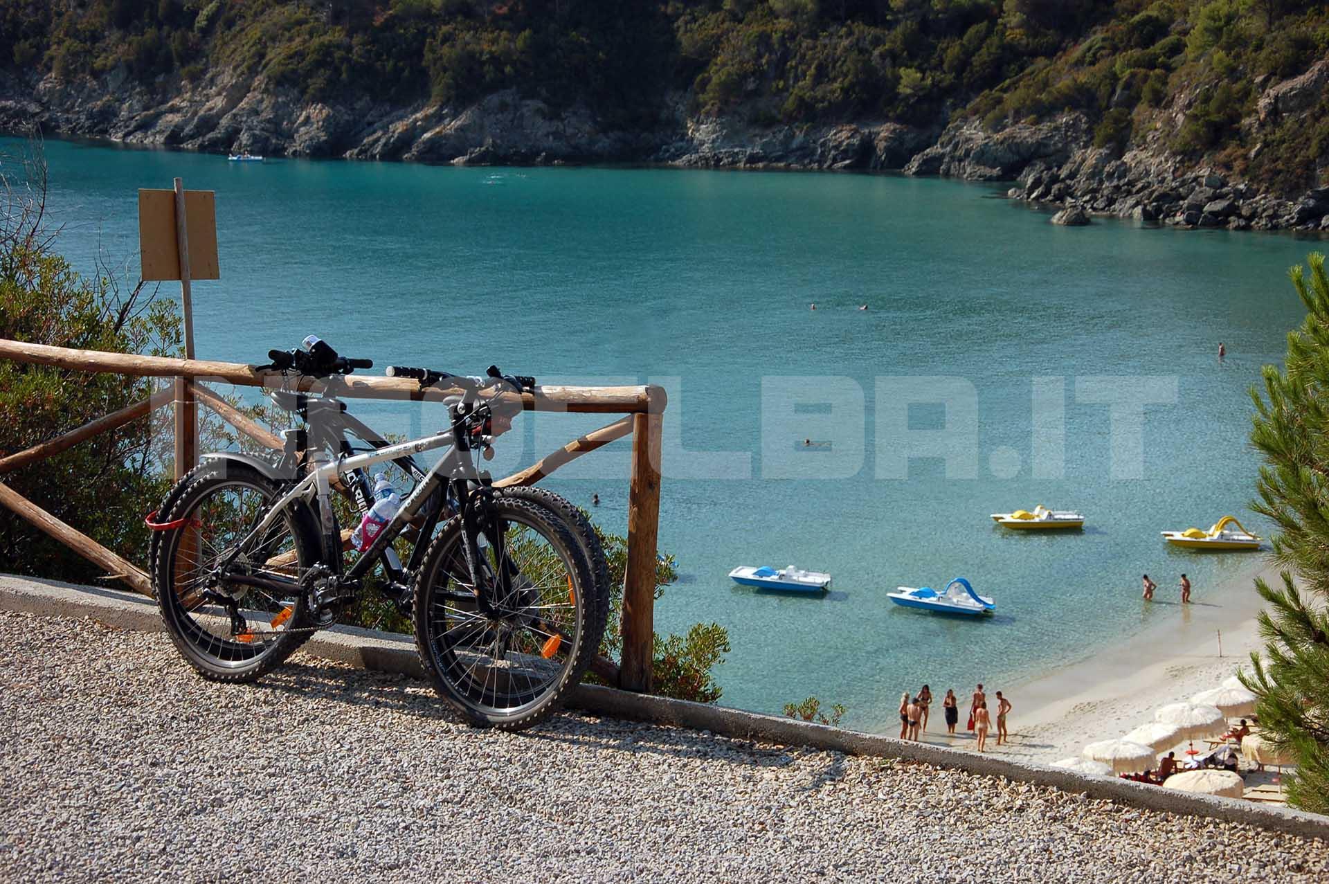 bici copy